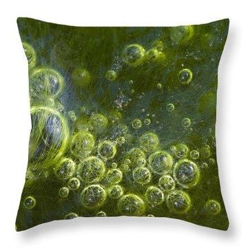 Green Algae Bubbles In Creek Throw Pillow