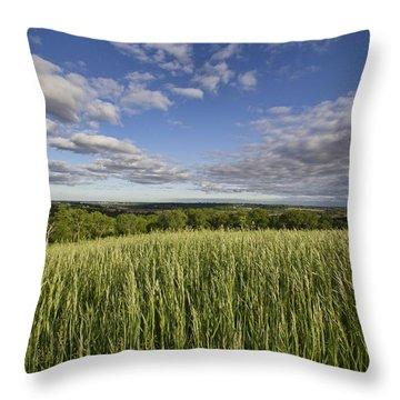 Green And Blue Throw Pillow by Daniel Sheldon