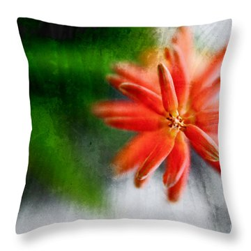 Green And Orange Throw Pillow