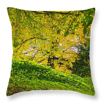 Green And Yellow Throw Pillow by Brian Wallace
