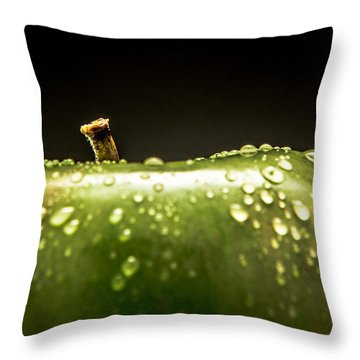 Green Apple Throw Pillow by Wade Brooks