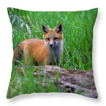 Green As Grass Throw Pillow by Jim Garrison