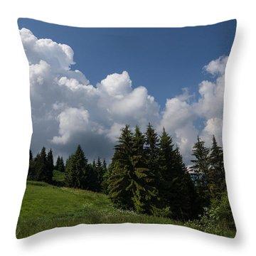 Throw Pillow featuring the photograph Green Ball Gowns  by Georgia Mizuleva
