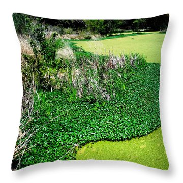 Green Belt Throw Pillow