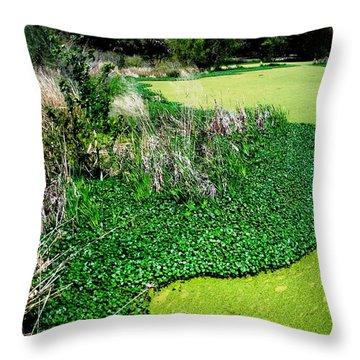 Green Belt Throw Pillow by Robin Lewis