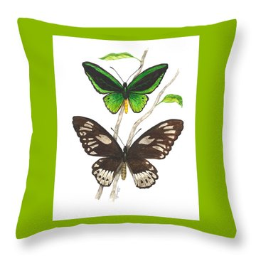 Green Birdwing Butterfly Throw Pillow by Cindy Hitchcock