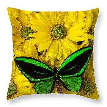 Green Butterfly Resting Throw Pillow by Garry Gay