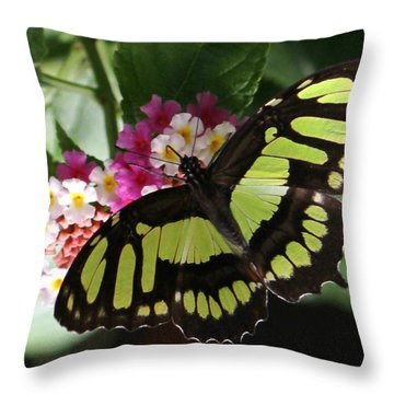 Green Butterfly With Flowers Throw Pillow