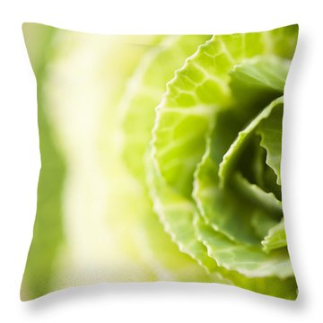 Green Cabbage Throw Pillow by Anne Gilbert