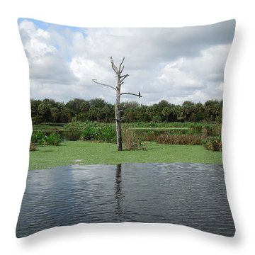Throw Pillow featuring the photograph Green Cay Panorama by Ron Davidson