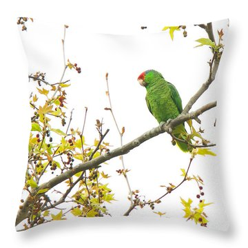 Throw Pillow featuring the photograph Green-cheeked Amazon Parrot by Ram Vasudev
