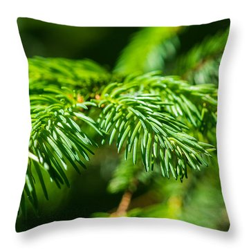 Green Christmas Tree 2 Throw Pillow