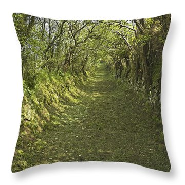Throw Pillow featuring the photograph Green Country Lane by Jane McIlroy