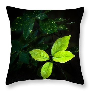 Bright Life Throw Pillow