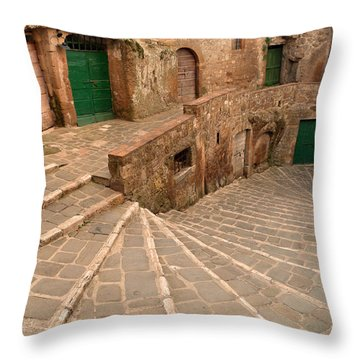 Throw Pillow featuring the photograph Green Doors by Alan Socolik