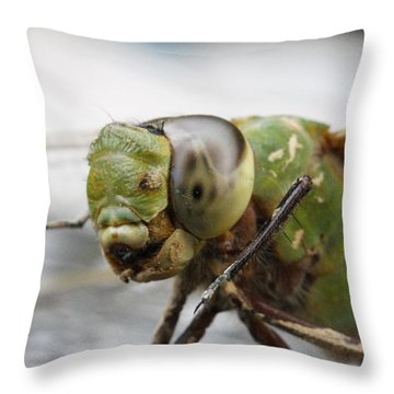 Green Dragon  Throw Pillow by Shoal Hollingsworth