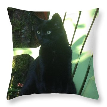 Green Eyed Baby Throw Pillow by Kim Prowse
