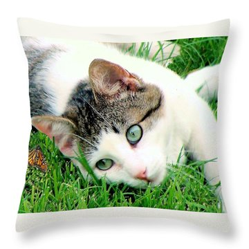 Throw Pillow featuring the photograph Green Eyed Cat by Janette Boyd