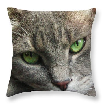 Throw Pillow featuring the photograph Green Eyes by Leigh Anne Meeks