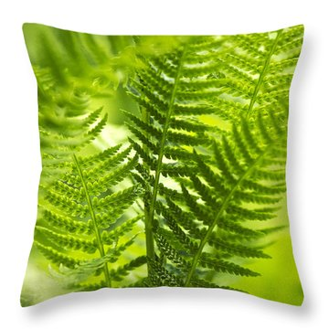 Green Fern Art Throw Pillow by Christina Rollo
