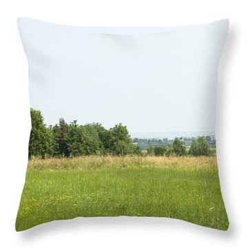 Green Field Panorama Throw Pillow
