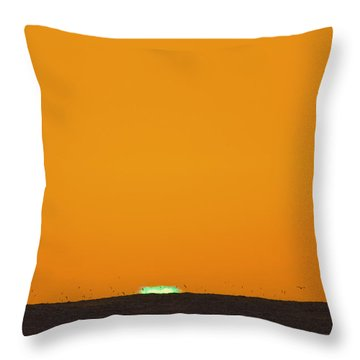 Green Flash Bird Pile Throw Pillow