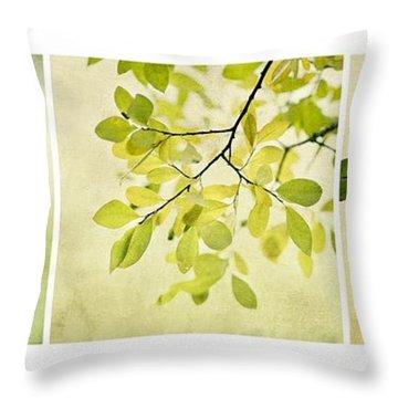 Green Foliage Triptychon Throw Pillow by Priska Wettstein