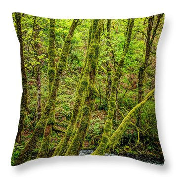 Green Green Throw Pillow by Jon Burch Photography