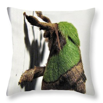 Green Hair Moth Throw Pillow