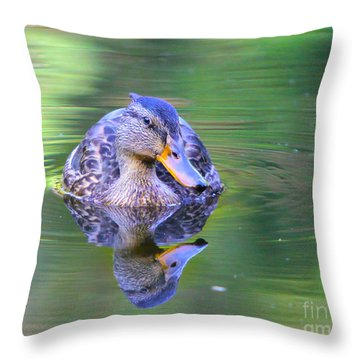 Green-headed Duck At Sunset Throw Pillow