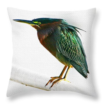 Green Heron In Scottsdale Throw Pillow