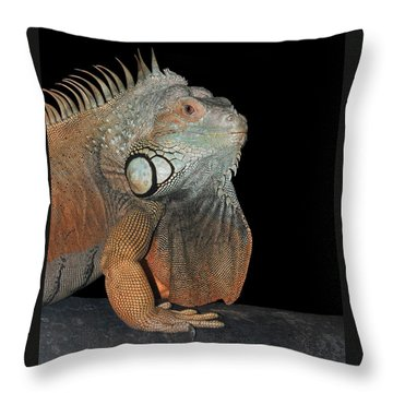 Green Iguana  Throw Pillow by Judy Whitton