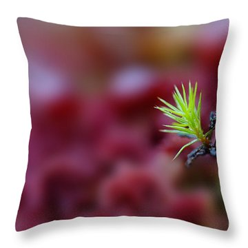 Green In A Sea Of Red Throw Pillow by Dan Friend