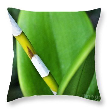 Green Leaves Throw Pillow by Heiko Koehrer-Wagner
