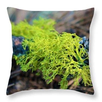 Green Lichen Throw Pillow