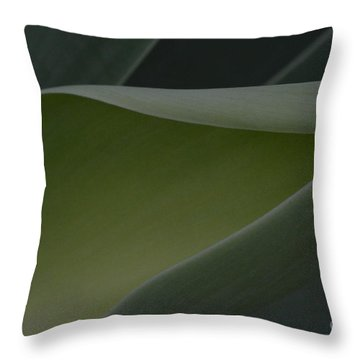 Green Light Throw Pillow by Tim Good
