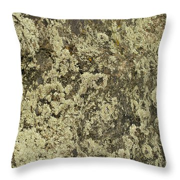 Throw Pillow featuring the photograph Green Moss by Les Palenik