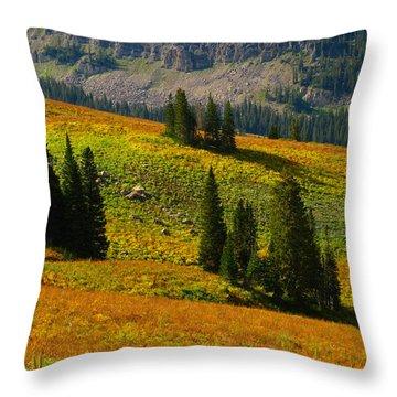 Green Mountain Trail Throw Pillow by Raymond Salani III