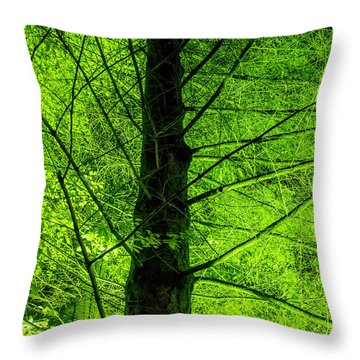 Throw Pillow featuring the photograph Green On Green by Ross G Strachan