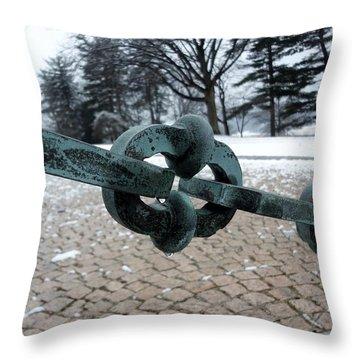 Throw Pillow featuring the photograph Green Patina by Michael Porchik