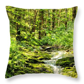Green River No2 Throw Pillow by Weston Westmoreland