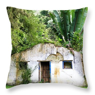 Green Roof Throw Pillow
