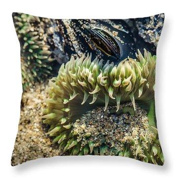 Green Sea Anemone Throw Pillow