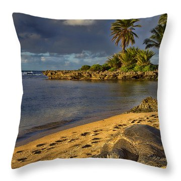 Green Sea Turtle At Sunset Throw Pillow