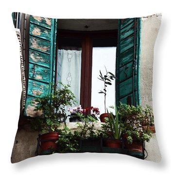 Green Shutters In Venice Throw Pillow