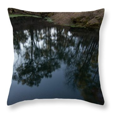 Throw Pillow featuring the photograph Green Sink Reflection by Paul Rebmann