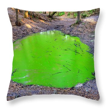 Green Spill Throw Pillow by David Lee Thompson
