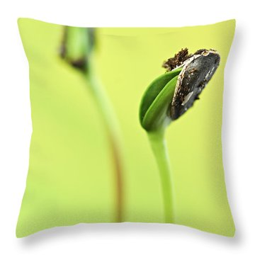 Green Sprouts Throw Pillow by Elena Elisseeva