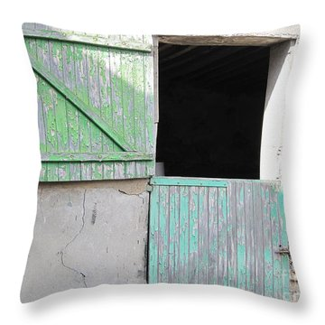 Green Stable Door Throw Pillow