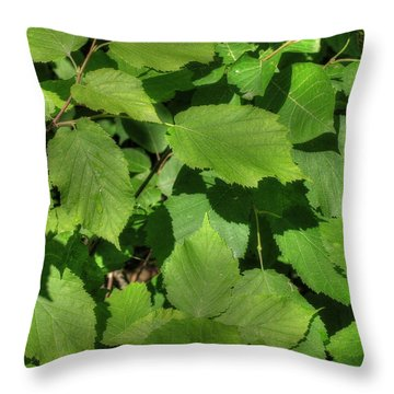 Throw Pillow featuring the photograph Green Summer Leaves by Jim Sauchyn